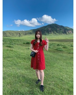 Korea Vintage Style Love Button Front Fluted Short Sleeve Dress (Maroon)